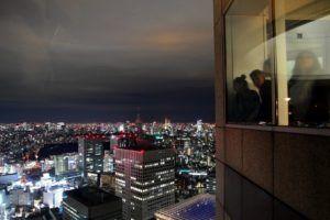 Vistas desde Tokyo Metropolitan Goverment Building