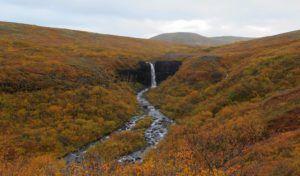 Cascada Svartifoss, En Ruta por Islandia