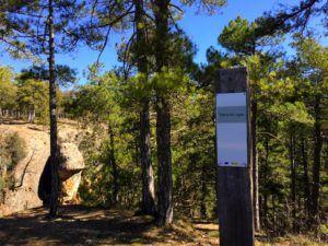 Tierra Muerta y Palancares, Cuenca