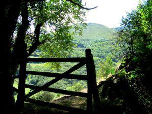 Ubiñas-Las Mesas, Parque Natural de Asturias