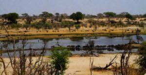 Parque Nacional de Makgadikgadi