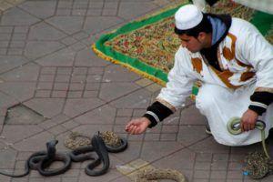Encantador de serpientes en Marrakech