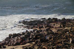 Cape Cross zona protegida de Namibia