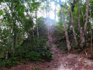 Maya Trek, trekking por selva del Peten, Guatemala