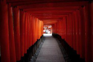 Ruta por Japón en 7 ó 15 días