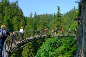 Cliffwalk, Capilano