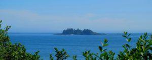 Wild Pacific Trail, Isla de Vancouver