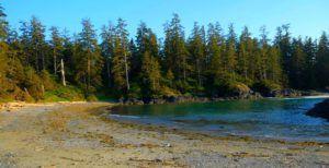Playas salvajes en el Wild Pacific Trail, Isla de Vancouver