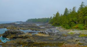 Pacific Rim National Park, Isla de Vancouver