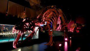 Tiranosaurio Rex en Dinópolis
