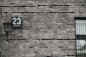 Visita a Aushwitz y Birkenau, Polonia