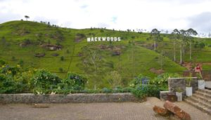 La plantación de té de Mackwoods Labookellie, Nuwara Eliya
