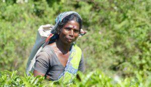 Mujer de la etnia Tamil