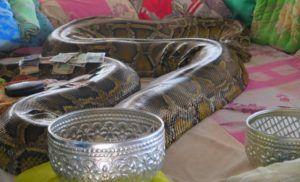 Monasterio de la Serpiente de Bago