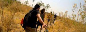 Safari a pie por el delta del Okavango
