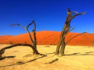 El DeadVlei, Namibia