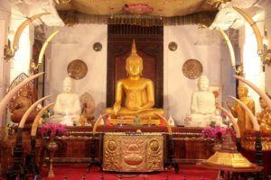 Participar en una ofrenda en el interior del Templo del Diente de Buda