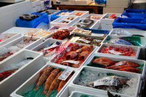 Mercado Tsukiji de Tokio