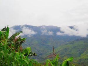 Los paisajes de selva hacia Rio Dulce