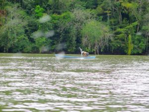 En lancha por el cañón del Rio Dulce, Guatemala
