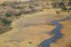 Delta del Okavango, lo volamos en avioneta