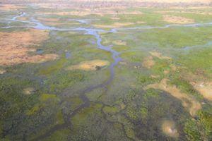 Delta del Okavango, Botswana