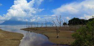 Parque Nacional de Bako, Borneo, Malasia