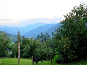 Paisajes que recorremos hasta llegar a Hallstatt, Austria