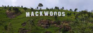 Mackwoods Labockellie, Sri Lanka