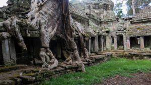 Ta Prohm, Angkor, Camboya