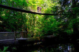 Capilano Bridge, qué ver en Vancouver en 2 días