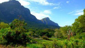 Jardín Botánico de Kirstenbosch, Ciudad del Cabo