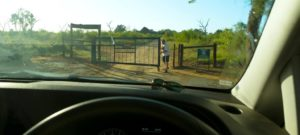 Saliendo del campamento Hlane Ndlovu Camp