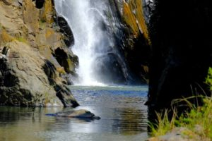 Reserva Natural de Mantenga, Suazilandia, Rey de Esuantini