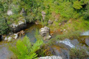 Entorno en The Pinnacle Rock