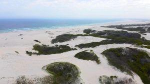 Qué ver en De Hoop Nature Reserve de Sudáfrica