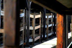 Barracones en Birkenau, Polonia