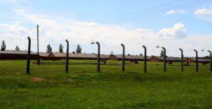 Visita a Auschwitz y Birkenau, Polonia