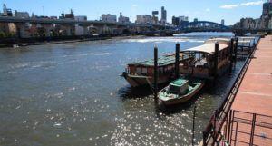 El Puente Azuma