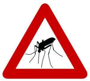Malaria en Suazilandia (Esuatini)