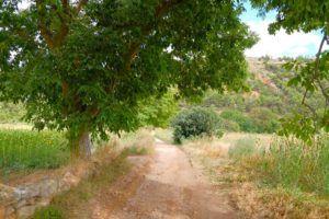 Caminos para llegar a Aguallueve