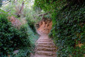 Camino al Castillo de Anento