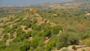 Qué ver en el Valle dei Templi di Agrigento