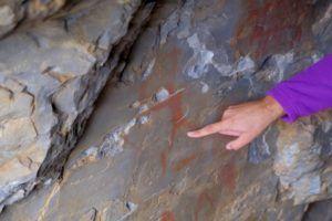 Abrigo del Castillo y las pinturas rupestres